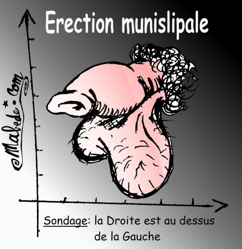 erectionmunislipalefinal